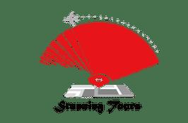 Stunning Tours Logo